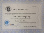 Team Coaching, Erickson College